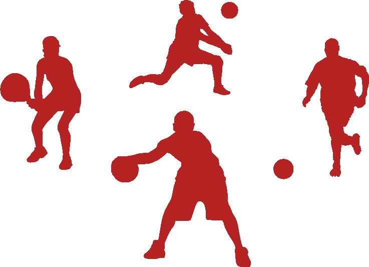 sportines dangos universalumas